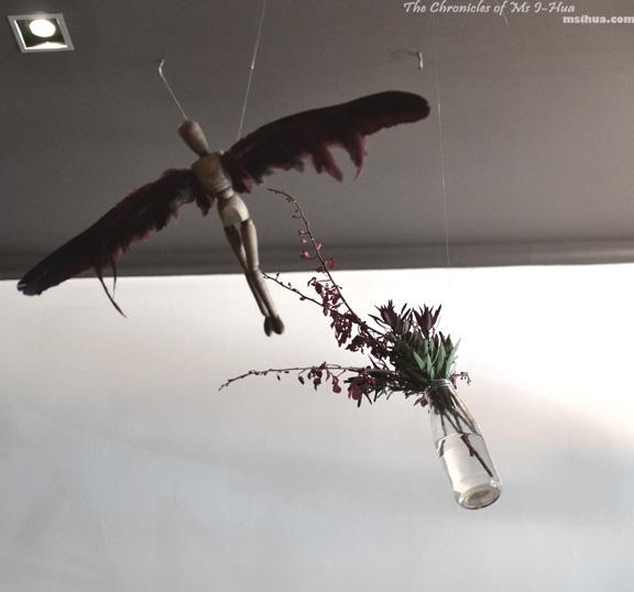 birdman_front