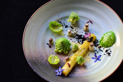 Playground Series: Romanesco, Leek, Soil
