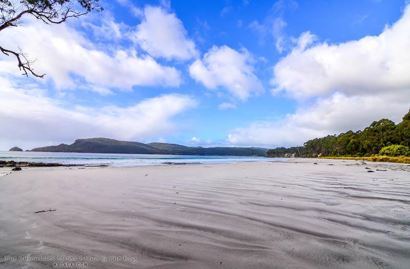 adventure_bay_coastal_reserve_2