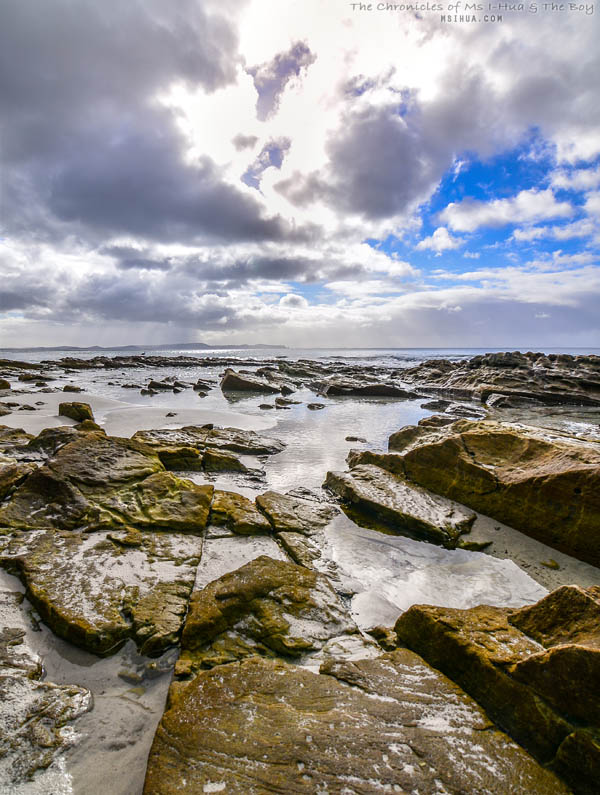 adventure_bay_coastal_reserve_5