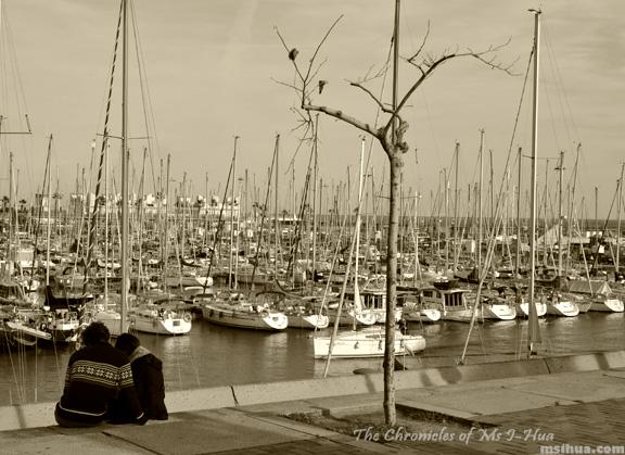 barca_marina