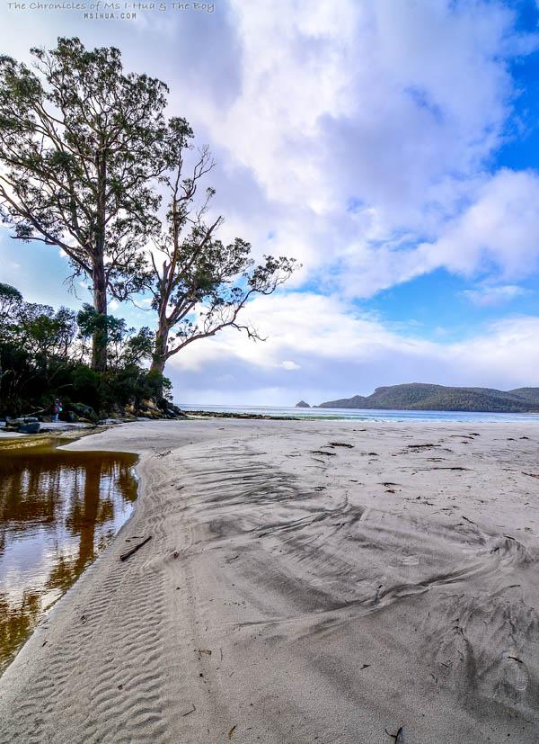 adventure_bay_coastal_reserve_1