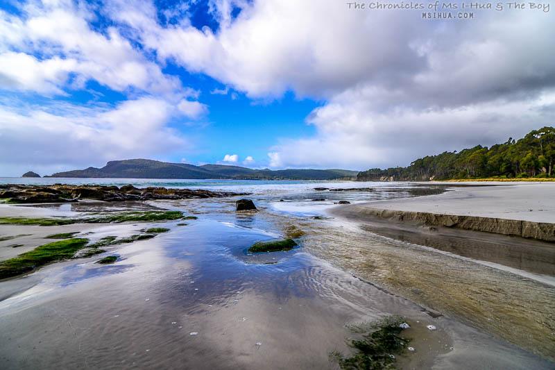 adventure_bay_coastal_reserve_3