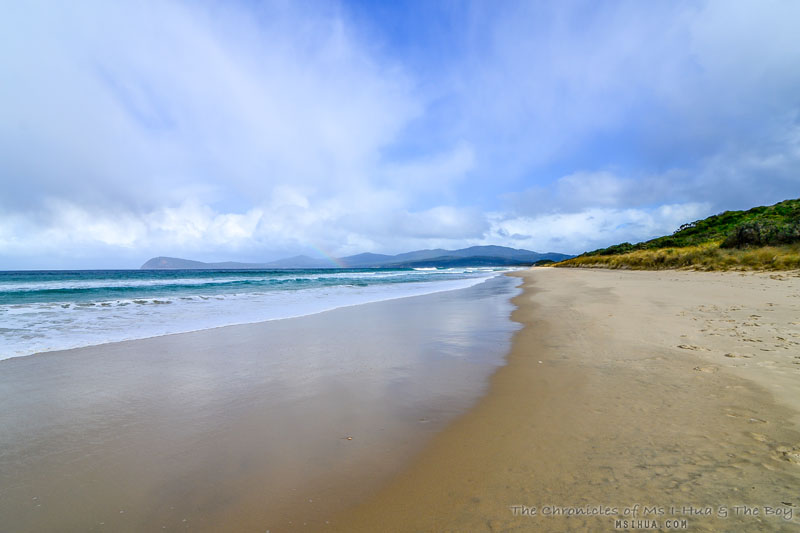 bruny_island_neck_game_reserve_2