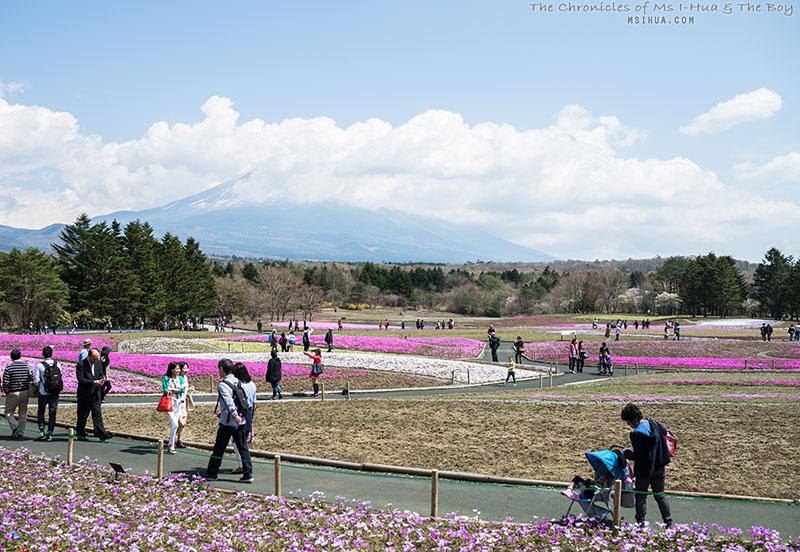 japanD1_3